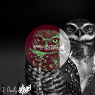 Various Artists - All Owls Eleven