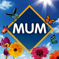 Various Artists - Mum: The Collection