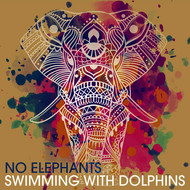No Elephants - Swimming with Dolphins